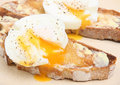 Poached Eggs on Toast Royalty Free Stock Photography