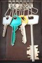 Pocket keys ring Royalty Free Stock Photo