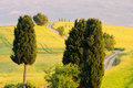 Podere terrapille track in the fields in tuscany Stock Image