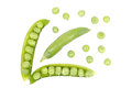 Pods of green peas Stock Images