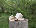 Poetry book lying on old stub in the garden Royalty Free Stock Photo