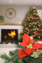 Poinsetta holiday vertical Stock Photography