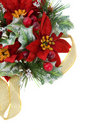 Poinsettia Christmas decoration with gold ribbon Royalty Free Stock Photos