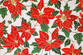 Poinsettia floral pattern Stock Images