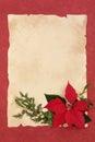 Poinsettia Flower Border Royalty Free Stock Photo