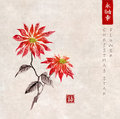 Poinsettia hand drawn with ink on vintage background. Christmas star flower. Traditional oriental ink painting sumi-e, u Royalty Free Stock Photo