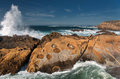 Point Lobos` Concretions Royalty Free Stock Photo