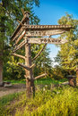 Pointer in park recreation areas verbilki taldomsky district moscow region russia Stock Image