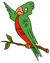 Pointing Parrot Stock Images