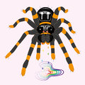 Poisonous spider tarantula illustration vector Royalty Free Stock Photography