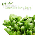 Pok choi on white background Stock Photo