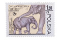 POLAND - CIRCA 1978: A stamp printed in  shows Elephant mo Royalty Free Stock Photo