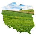 Poland map with green meadow background isolated on white Stock Photography
