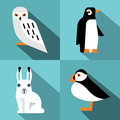 Polar animals in flat style with long shadow