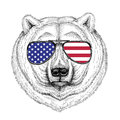 Polar bear Hand drawn illustration for tattoo, t-shirt, emblem,
