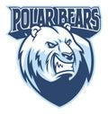 Polar bear head mascot Royalty Free Stock Photo