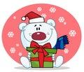 Polar bear holding a gift Royalty Free Stock Photo