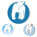 Polar bear label Stock Photos