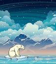 Polar bear, sea, mountain and night sky.