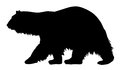 Polar bear vector illustration of silhouette Stock Images