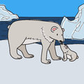 Polar bears vector illustration of an adult bear with a bear baby on a icy background Stock Photo