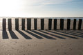 Poles on the beach demarcating at late afternoon Royalty Free Stock Photography