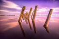 Poles in the water at night on a background stars unusual reflection sky Stock Photos