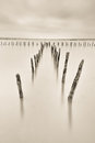 Poles in the water silence concept calmness and Royalty Free Stock Photos