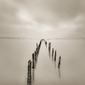 Poles in the water silence concept calmness and Royalty Free Stock Image
