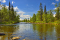 Polisarka river kola peninsula spawning salmonids in the arctic russia Royalty Free Stock Photos