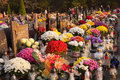 Polish cemeteries all saints day on Stock Images