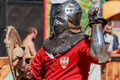 Polish Knight is ready for battle Royalty Free Stock Photo
