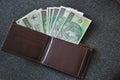 Polish money photo of a bank notes Royalty Free Stock Photos