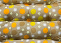 Polka dot fabric. Stock Images