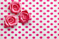 Polka dot paper and roses Stock Photography