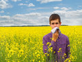 Pollen allergy boy teenager in yellow canola field blowing his nose and suffering from Royalty Free Stock Images