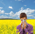 Pollen allergy boy teenager in yellow canola field blowing his nose and suffering from glasses slightly protect the eyes from Royalty Free Stock Image