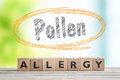 Pollen allergy headline with a wooden sign Royalty Free Stock Photo