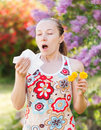 Pollen allergy is a seasonal or regional allergic kind Stock Image