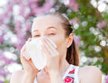 Pollen allergy is a seasonal or regional allergic kind Royalty Free Stock Image
