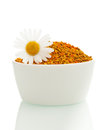 Pollen in a bowl with daisy Stock Images