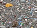 Polluted lake. Pollution in water. Plastic bottles. Diseases and illnesses Royalty Free Stock Photo