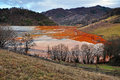 Pollution of a lake with contaminated water from a gold mine. Royalty Free Stock Photo
