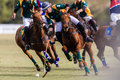Polo match close action between chile south africa playing chasing the ball between rider players and horse ponies at shongweni Stock Images