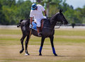 Polo player Royalty Free Stock Photo