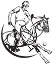 Polo pony horse and player . Equine sport club