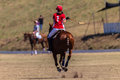 Polo riders girl horse play aktion Stockbild