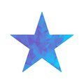 Polygon blue icon star