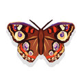 Polygonal and large beautiful butterfly on a white background Royalty Free Stock Photo
