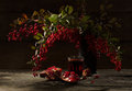 Pomegranate and barberry Stock Images